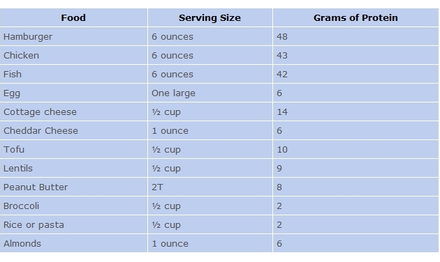Protein Sources - Foods with Protein