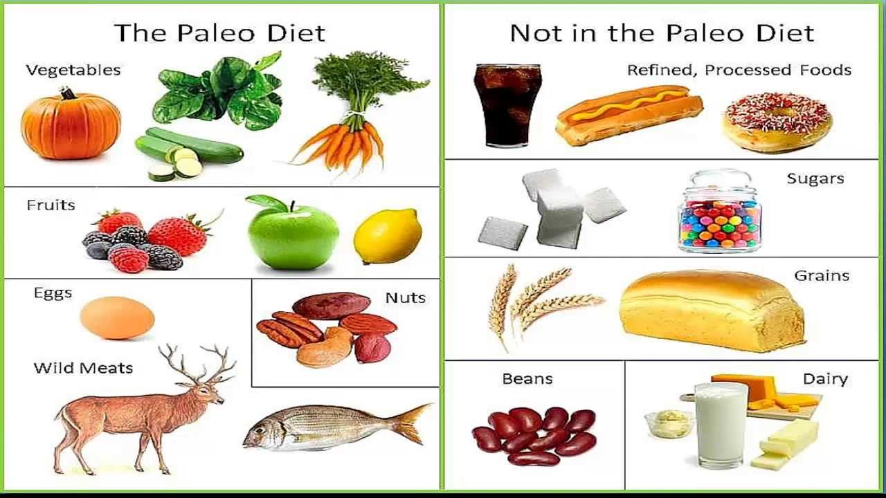 Paleo Diet - what is it, should you try it - Level 9 Fitness